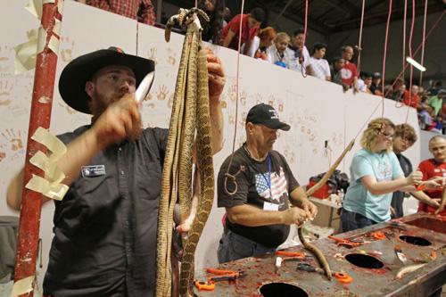 10.000 rắn đuôi chuông bị giết trong lễ hội truyền thống của Mỹ - ảnh 1