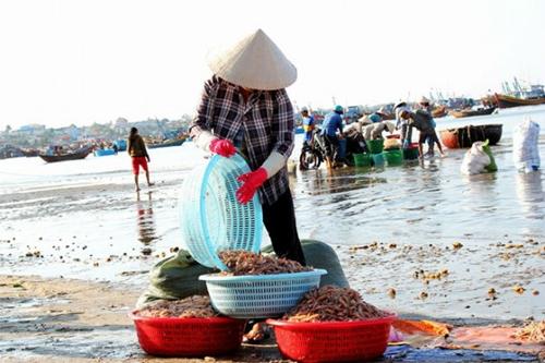 5 trải nghiệm hút khách dịp hè ở Phan Thiết - ảnh 4