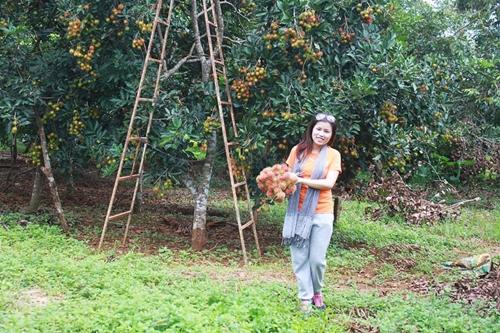5 miệt vườn trái cây gần TP HCM hot nhất hè này