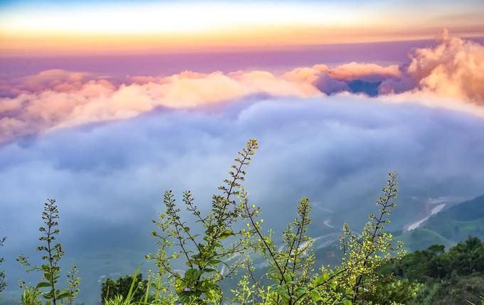 Biển mây bồng bềnh trên đỉnh Mẫu Sơn