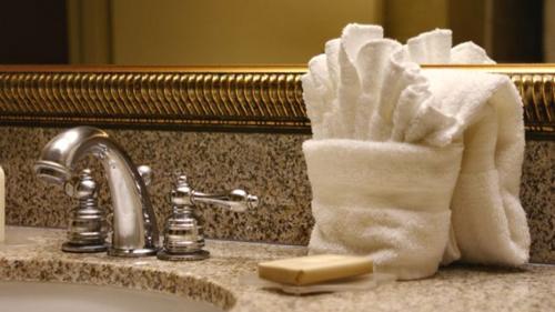 Bệ của bồn rửa mặt trong phòng tắm  Một nghiên cứu được gọi là Hotel Hygiene Exposed chỉ ra rằng các bệ rửa trong nhà tắm ở một số khách sạn 3 sao có một số loại nấm dễ lây lan và gây bệnh.
