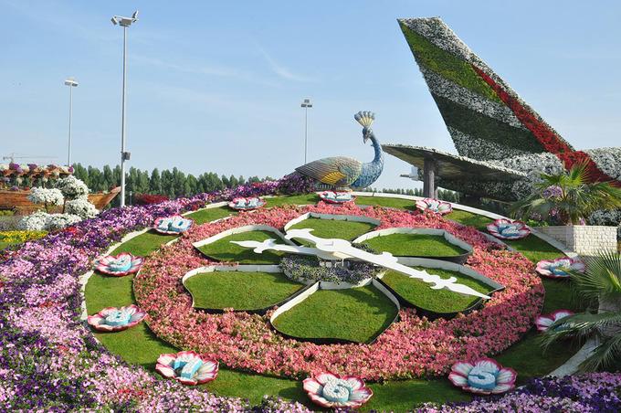 Vườn hoa nằm tại phân khu Al Barsha South, Dubai, mở cửa vào ngày Valentine năm 2013, từ đó trở thành một điểm đến nổi tiếng dành cho du khách yêu thích thiên nhiên và nhiều cặp đôi đến chụp hình cưới. Ảnh: Dubai Miracle Garden. Ảnh Minh An.