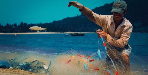 Nhiều điểm đến du lịch nổi tiếng xứ Quảng Đà xuất hiện trong các bài dự thi với những góc nhìn mới lạ