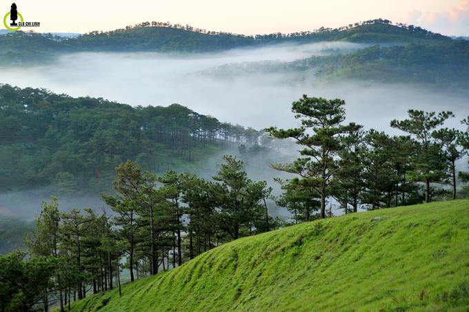 Hồ Suối Vàng - điểm săn mây lý tưởng ở Đà Lạt