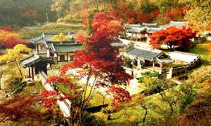 Tour Hàn Quốc sáu ngày giá trọn gói chỉ 9,99 triệu đồng