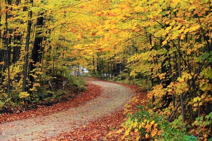 10 điểm đến ngắm mùa thu thay lá đẹp nhất thế giới