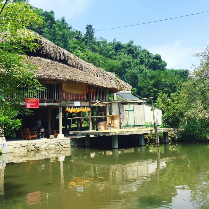 Homestay ở Hà Giang cho mùa săn hoa tam giác mạch