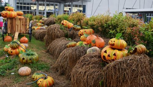goi-y-dia-diem-choi-halloween-mien-phi-o-sai-gon