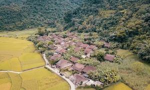 Ngôi làng biệt lập giữa cánh đồng mùa lúa chín