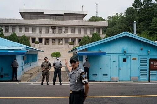 demilitarized zone south korea 1608 4981 1510017629 - DMZ - khu bảo tồn 'bất đắc dĩ' trên bán đảo Triều Tiên