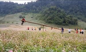 Khách Tây thán phục người Việt vì tạo ra đu quay bập bênh