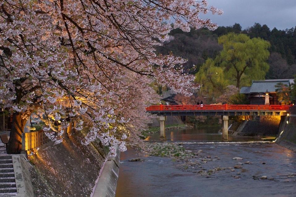 Takayama-640-35671-2037-1512988855.jpg