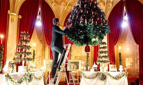 Vì sao Giáng sinh phải có cây thông? Du Lịch