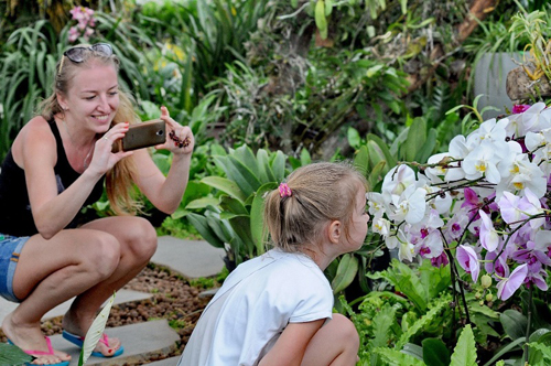 Nếu là yêu thiên nhiên, hoa lá, Nhà phong lan với hàng nghìn chậu lan rừng, lan quý sẽ là thế giới riêng để du khách thỏa sức khám phá.