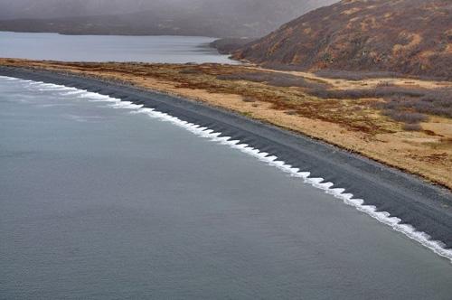 Sóng xô bờ tạo nên hình ảnh những cánh hoa đều tăm tắp ở quần đảo Shugamin, bang Alaska, Mỹ. Ảnh: AmusingPlanet.