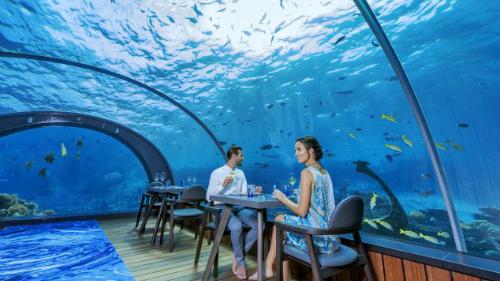 Bên trên là thuỷ cung bao quanh nhà hàng được ngăn cách với khu nhà hàng bằng kính cường lực. Ngồi ăn nơi đây, du khách không có cảm giác nhàm chán khi có thể ngắm nhìn từng rạn san hô, những đàn cá bơi lượn xung quanh tạo nên một cảm giác hoà mình với thiên nhiên đích thực.