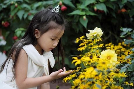 Nếu khu nhà kính Cloud Forest là trải nghiệm khó quên với các bé ham khám phá thì khu nhà kính Flower Dome lại là địa điểm thơ mộng cho những bé yêu hoa với hơn 32.000 loài thực vật thuộc 160 chủng loại khác nhau.Flower Dome tái hiện khí hậu khô mátcủa những vùng như California, Mỹ hay Nam Phi, với các chủng loại thực vật đặc trưng, khó có thể tìm thấy ở châu Á.Cứ mỗi hai tháng, Flower Dome sẽ được phủ một bộ áo mới với những loài thực vật theo chủ đề trong năm. Gia đình Hoàng Bách thường tìm hiểu về những chủ đề này trên website chính thứctrước khi đặt vé.