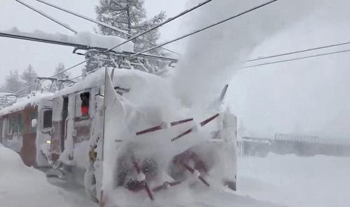 TheoSRF, các đoàn tàu vận chuyển khách lên, xuống núi cũng bắt đầu hoạt động trở lại.