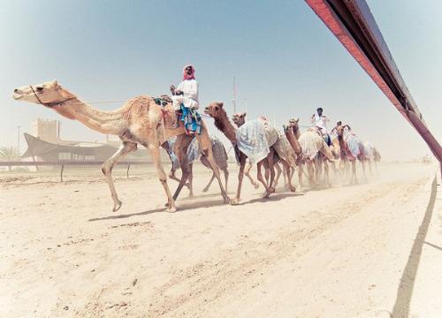 Trung Đông là điểm đến mới với du khách dịp Tết.