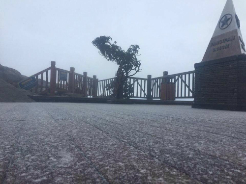 Tuyết phủ trắng mặt sàn trên đỉnh Fansipan. Ảnh: Anh Ngọc.