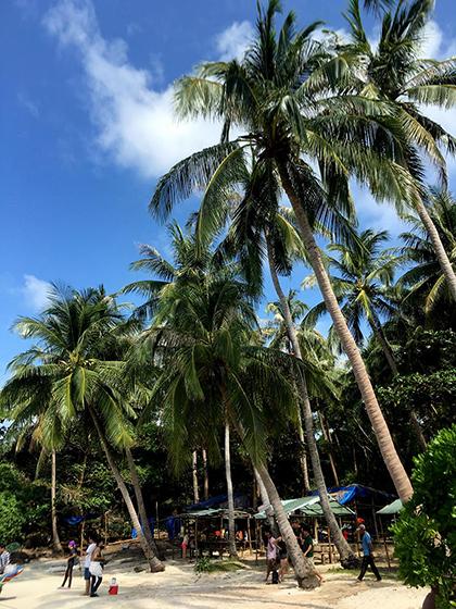 Phú Quốc đang vào mùa nắng với nền trời trong xanh, rất thích hợp để chụp ảnh. Ảnh: Vy An.