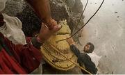 Những người liều mạng săn mật ong trên vách núi ở Nepal