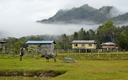 Khám phá Miri và Kuching, hai vùng đất xa xôi Đông Malaysia - 12