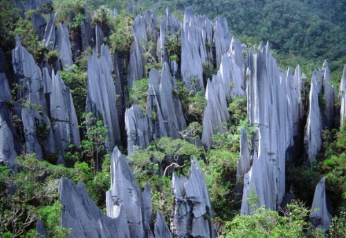 Trung tâm thành phố không có nhiều điểm tham quan, người ta đến đây để trung chuyển đến các địa điểm du lịch sinh thái ấn tượng khác của Sarawak, với 4 công viên quốc gia nổi tiếng là Gunung Mulu, Niah, Lambir Hills và Loagan Bunut.Công viên quốc gia Gunung Mulu, cách Miri khoảng 45 phút đường bay, nổi tiếng bởi những hang động đá vôi, những lòng hang rộng nhất thế giới. Nơi này còn rặng núi đá chông The Pinnacles ấn tượng.
