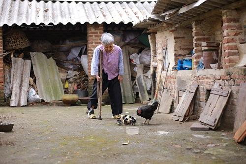 Trại phong Phú Bình chỉ là một hình ảnh tiêu biểu cho cuộc sống cơ cực của hai nhóm yếu thế người già neo đơn và trẻ mồ côi trong dịp Tết này.