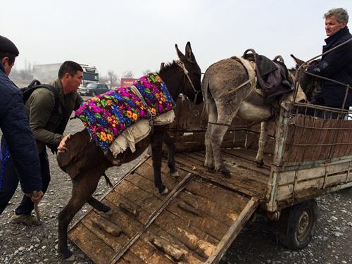 Du khách khi đến Uzbekistan cần phải xin thị thực, ngoại trừ công dân của Cộng đồng các Quốc gia Độc lập CIS (bao gồm các quốc gia thành viên cũ của Liên bang Xô Viết).Các hoạt động mà du khách có thể tham gia khi đến đây là cưỡi lạc đà, đi bộ đường dài, xem chim, đi bè và trượt tuyết. Du khách khi đến đây cũng không nên chụp ảnh các tòa nhà chính phủ, các trung tâm vận chuyển. Nếu muốn chắc chắn, bạn hãy hỏi người bản địa trước khi giơ máy. Ảnh: NatGeo.