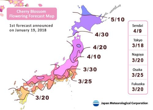 Bản đồ dự báo mùa hoa anh đào năm 2018 tại Nhật Bản. Ảnh: JRailpass.