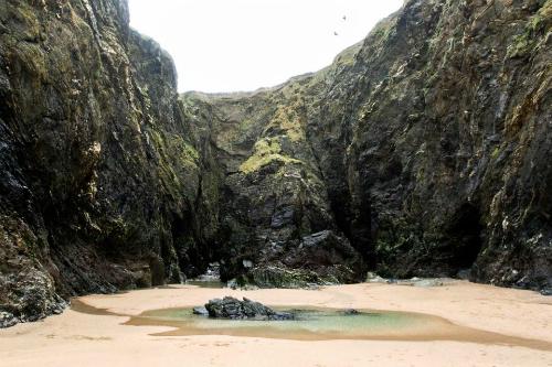 Ở phía xa xa của bãi biển là một hang động nhỏ - nơi nhiếp ảnh gia người Anh Tom Last đã khám phá ra các hình ảnh được tạc trên đá. Ảnh: Sun.