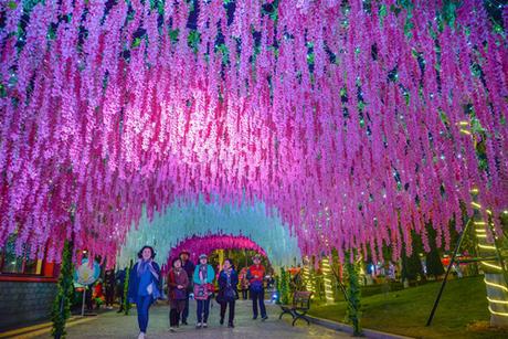 Vườn hoa Tử Đằng với gam màu tím hồng đan xen màu trắng tinh khôi rực rỡ, nổi bật trên nền trời đêm.