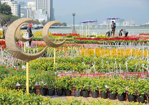 Đường hoa nằm dọc bờ sông Hàn.