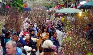 Báo Mỹ chia sẻ 6 điều thú vị về Việt Nam