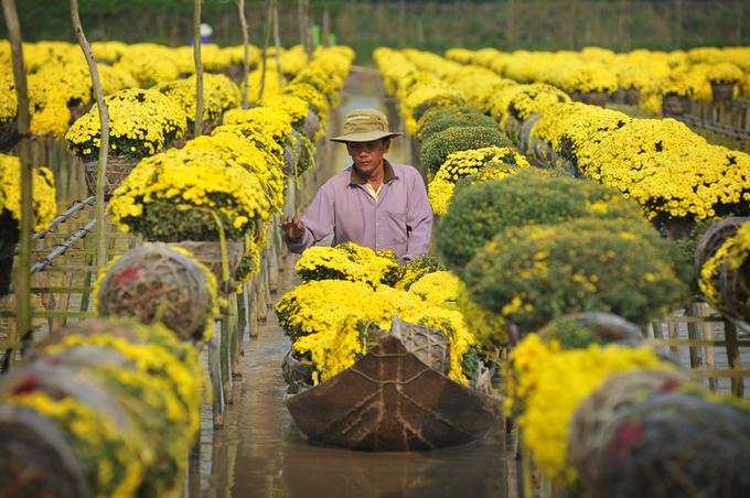 Ngôi làng hơn trăm năm trồng hoa 'không chạm đất' ở Sa Đéc