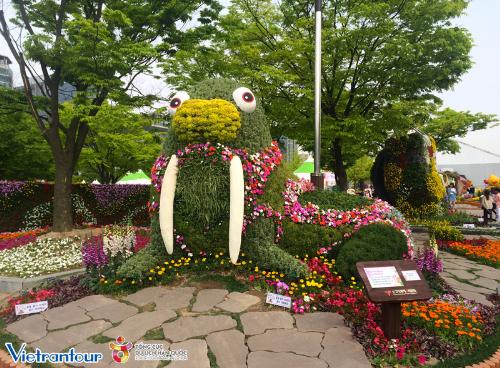 Ưu đãi lớn tour ngắm hoa xuân đẹp nhất xứ Hàn