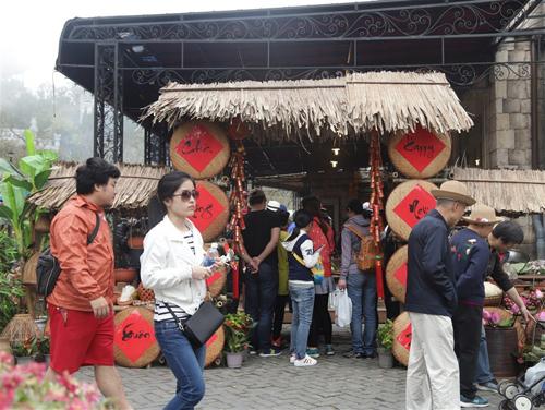 Muôn hoa đua nở tại lễ hội hoa Bà Nà Hills Đà Nẵng - ảnh 7