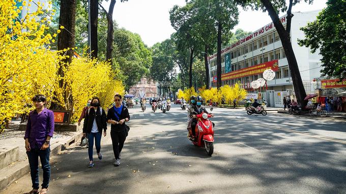 Sài Gòn thay áo hoa, sẵn sàng đón Tết 2018