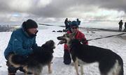 Người hùng xả thân cứu chó mất tích khi đang leo núi