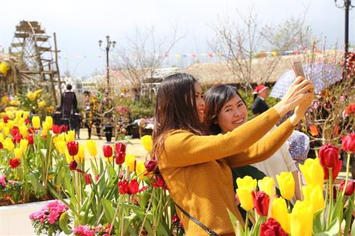 Cùng với đào, mai, mận, lan, đỗ quyên, Lễ hội khèn hoa chủ đề Sắc xuân Tây Bắc năm nay còn đón thêm nhiều loài hoa mới nhập về để du khách có dịp thưởng lãm. Hàng trăm gốc tulip đủ màu khoe sắc gần khu vực ẩm thực địa phương níu chân nhiều nhóm khách cả giờ đồng hồ chỉ để check-in và vui đùa.