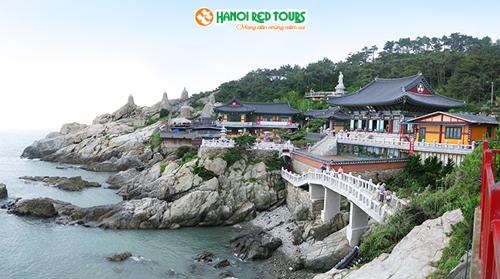 Giảm 5 triệu đồng tour ngắm hoa anh đào tại Seoul  Busan - 3