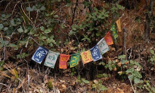 Những lá cờ đủ màu sắc được người dân Bhutan treo ở khắp nơi, với ước muốn một cuộc sống hạnh phúc, dài lâu. Những chữ cái trên lá còn cũng được khắc ở các vòng xoay cầu khấn (Prayer wheel) trong cácchùa chiền, tu viện để người dân, du khách tới xoay. Người dân Bhutan quan niệm khi quay các vòng xoay này, con người có thể gửi hàng ngàn lời khấn nguyệnlên trời, cầu mong may mắn đến cho mình và người thân.