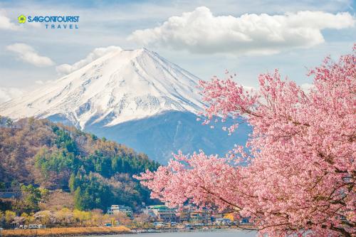 Núi Phú Sĩ.