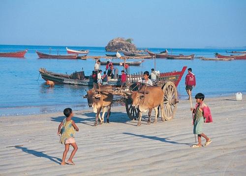 Bãi biển Ngapali, Thandwe, MyanmarNgapaliđược biết đến với hàng loạt quy định do chính quyềnđịa phương đề rađể bảo vệ bờ biển như nghiêm cấm cưỡi ngựa, chơi motor nước (jet ski) và khai thác cát. Nhiều nhà hàng bãi biển cùng chung tay hỗ trợ các hoạt động đánh bắt bền vững.Ô nhiễm không khí và tiếng ồn được duy trì ở mức tối thiểu bởi chỉ có thể tìm thấy xe điện ở đây.