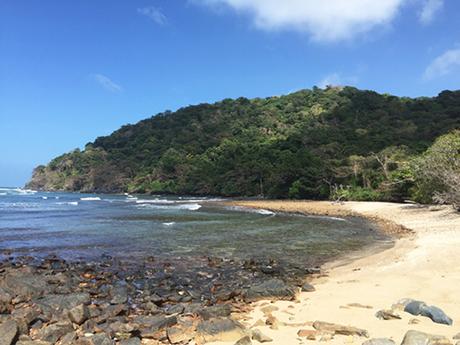 Bãi Đất Thắm, Côn ĐảoTrong khi những bãi biển như Nha Trang, Đà Nẵng, Mũi Né thườngđông nghịt người, bãi Đất Thắm (thuộc Vườn quốc gia Côn Đảo) là một trong số ít bãi biển còn chưa phát triển tại Việt Nam.Hành trình đếnđây đòi hỏi sự cố gắng, khách du lịch cần trình diện tại văn phòng của vườn quốc gia trước khi bắt đầu cuộc leo núi hơn 6 kmđể đến được bãi biển hoang vắng này. Ảnh:Travelfish.