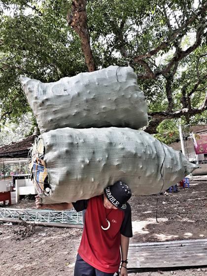 Những bao rác to gấp đôi người được các bạn trẻ tình nguyện thu gom, mang xuống núi.