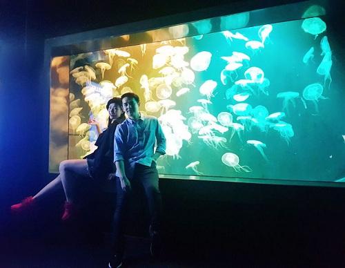 Nhi và Thắng ghé thăm Open Ocean Habitat và gặp gỡ những chú sứa biển tại Ocean Journey.
