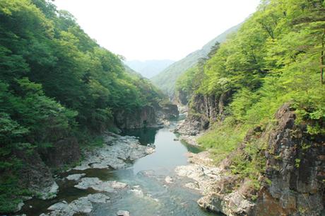 Thung lũng Ryuokyo là một khe núi tuyệt đẹp nằm giữa Suối nước nóng Kawaji và khu nghỉ mát Kinugawa Onsen. Màu nước thay đổi từ trắng, xanh sang tím, và dòng suối giống như một con rồng hung bạo đang giận dữ. Vì màu sắc và hình dạng này, nên nó được gọi là Thung lũng của Vua Rồng. Du khách sẽ mãn nhãn với nhiều thác nhỏ chảy vào sông, những ngọn núi đầy hoa tươi, và những bông hoa hình dáng và vẻ đẹp kỳ dị.