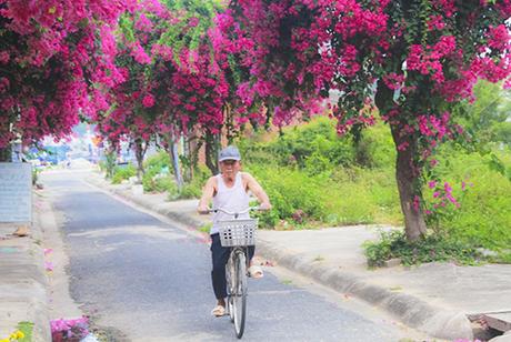 Nhiều du khách nhận xét đường Bạch Thái Bưởi là con đường đẹp nhất Nha Trang dù nhỏvà ngắn nhất thành phố. Con đường nằm ở khu vực Hòn Rớ, bên dòng sông Quán Trường, thuộc xã Phước Đồng, Nha Trang. Đây là khu đô thị tái định cư cho những người dân chài xưa sống ở làng chàicửa sông Cái, Nha Trang được di dời mở rộng đường  Trần Phú, xây dựng cầu Trần Phú. Khu Hòn Rớ đã hình thành gần 20 năm.